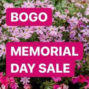 Other - MEMORIAL DAY SALE! BOGO FREE
